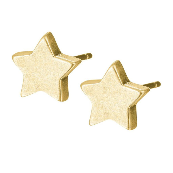 Sence Ohrringe Essentials Star worn gold